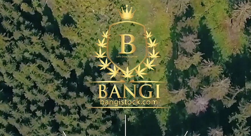 BANGI-SS